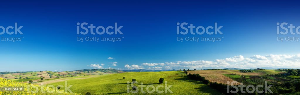Green field over blue clear sky royalty-free stock photo