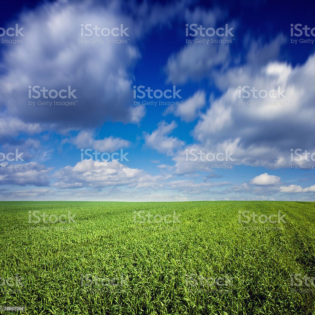 Green field over blue moody sky royalty-free stock photo