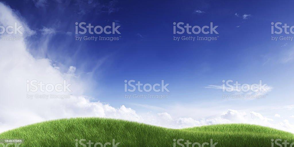 Green field. Panoramic. stock photo