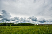 Green field. Summer landscape with beautiful clouds. Sunny weather.