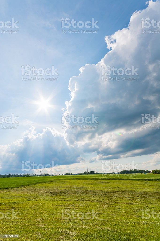 Beautiful massive clouds. Sunny weather panorama. Green lawn with...