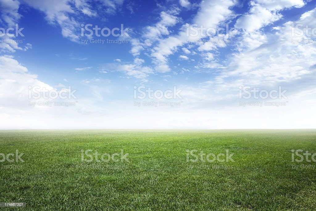 Green field under the blue sky royalty-free stock photo