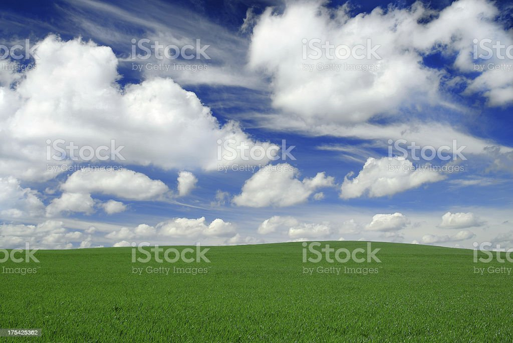 Green field white clouds and the blue sky royalty-free stock photo