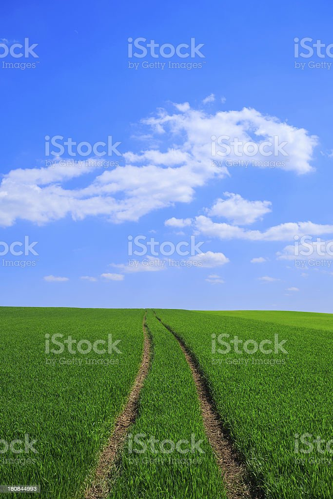 green field with farm road royalty-free stock photo