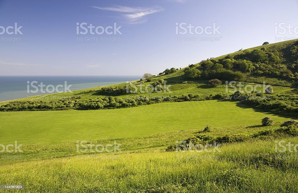 Green field with sea. royalty-free stock photo