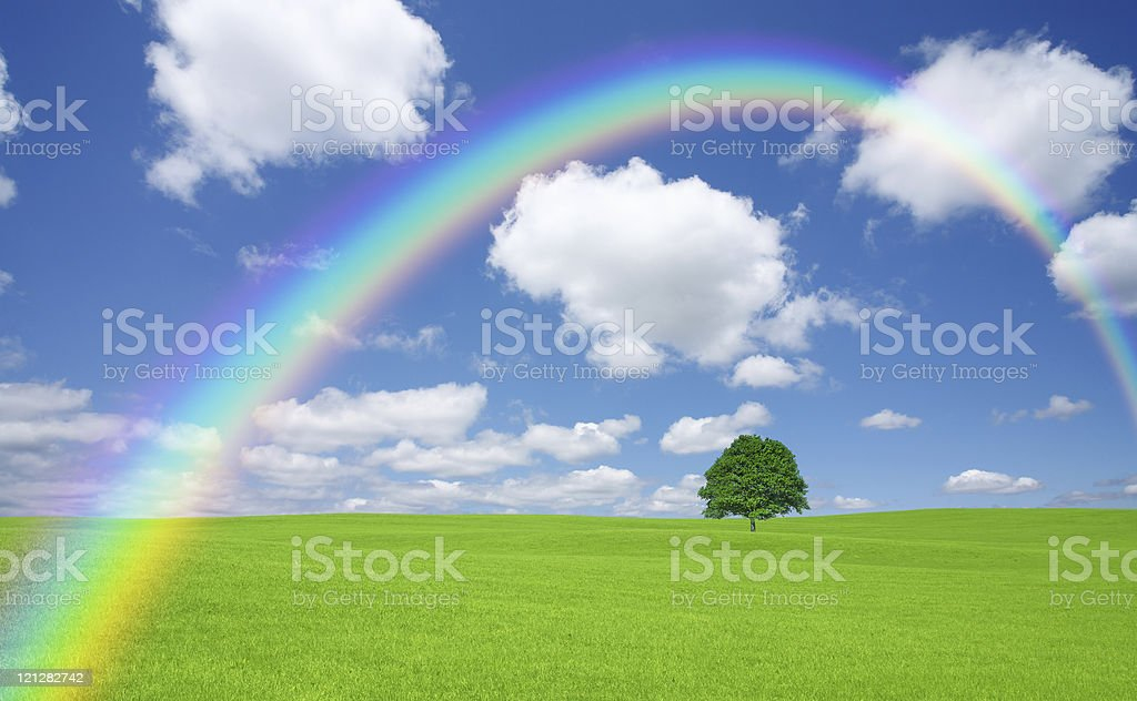 Green field with tree and rainbow royalty-free stock photo