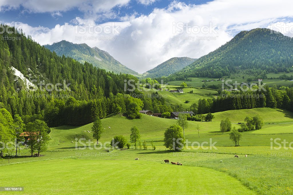 Green fields and mounatins stock photo