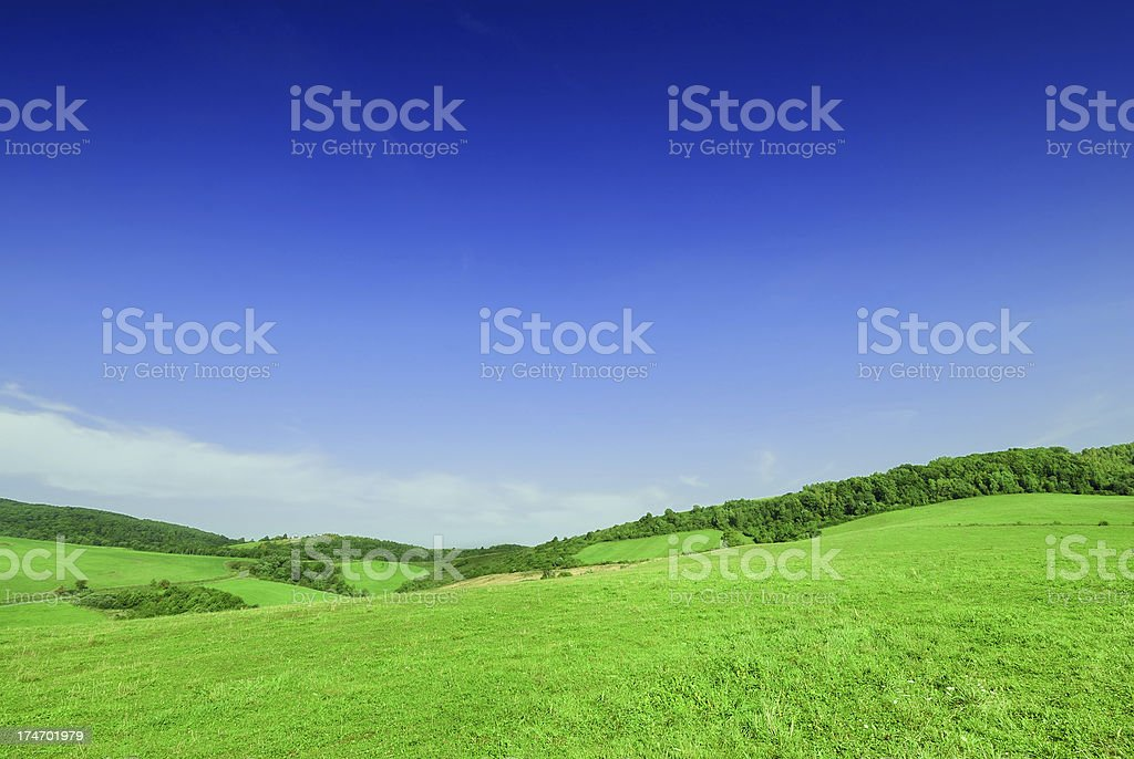 Green fields and strongly polarized blue sky royalty-free stock photo