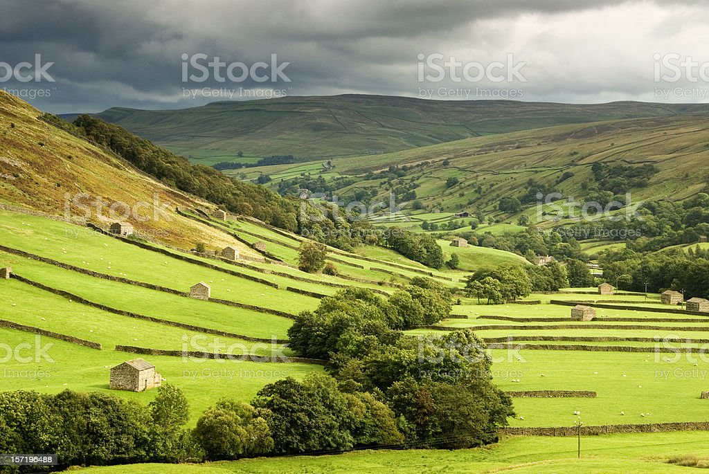 Green fields at Swaledale, Yorkshire stock photo
