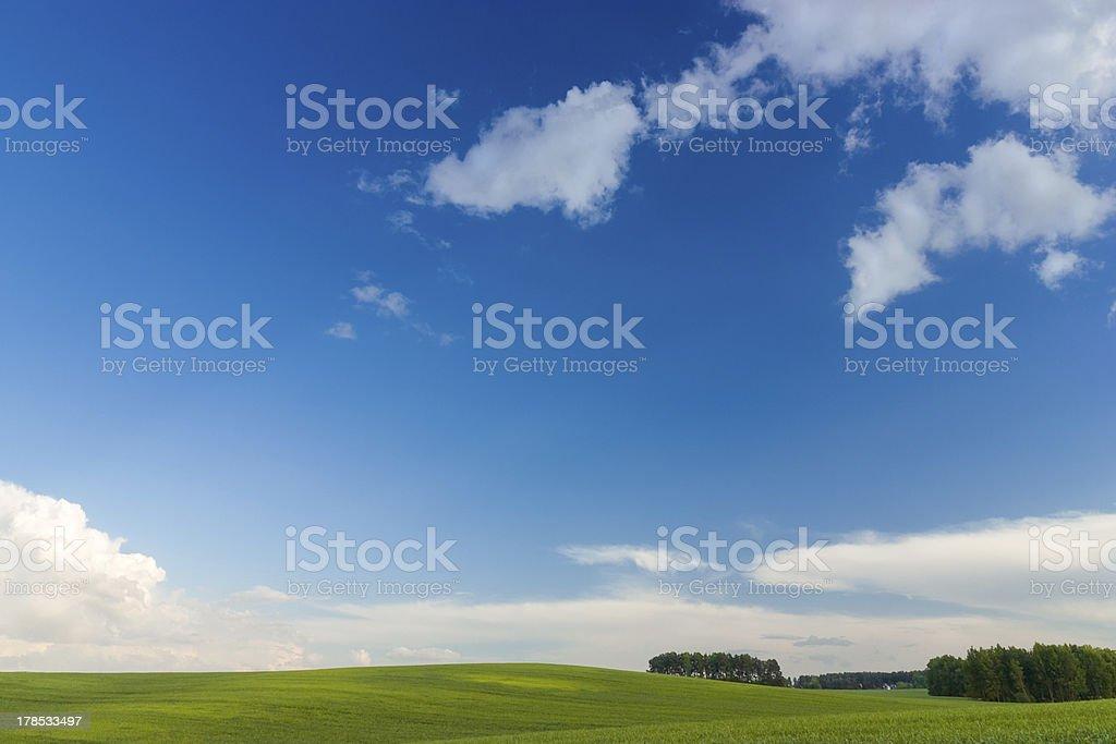 Green fields royalty-free stock photo
