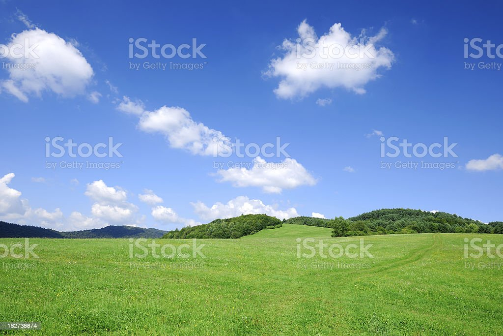 Green fields, the blue sky and white clouds royalty-free stock photo