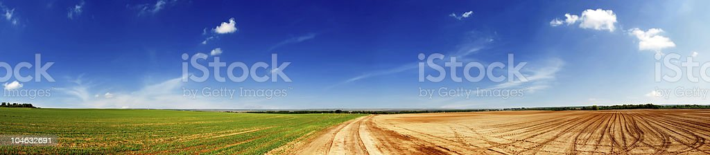 green fields to russia royalty-free stock photo