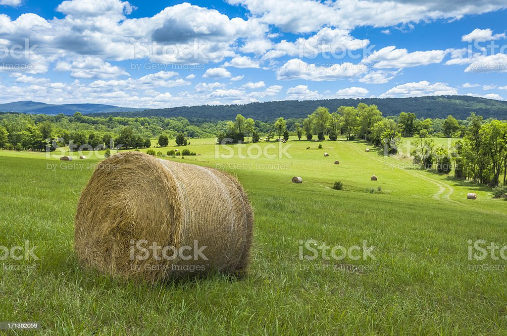 Green Fields with Hay Bales under Cloud-Filled Sky stock photo