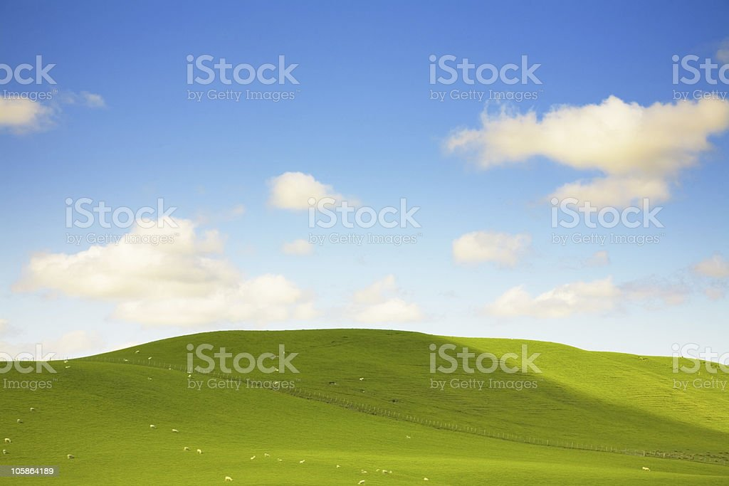 Green fileds, the blue sky and clouds royalty-free stock photo