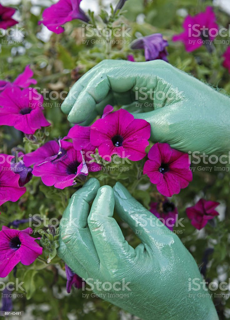 Green Fingers royalty-free stock photo