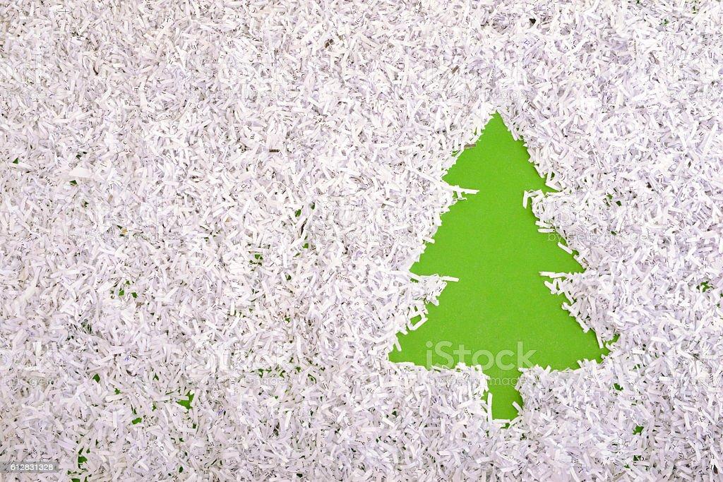 green fir symbol stock photo