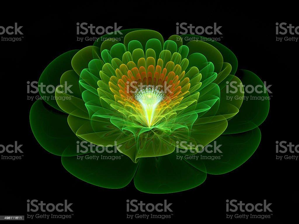 Green flower royalty-free stock photo