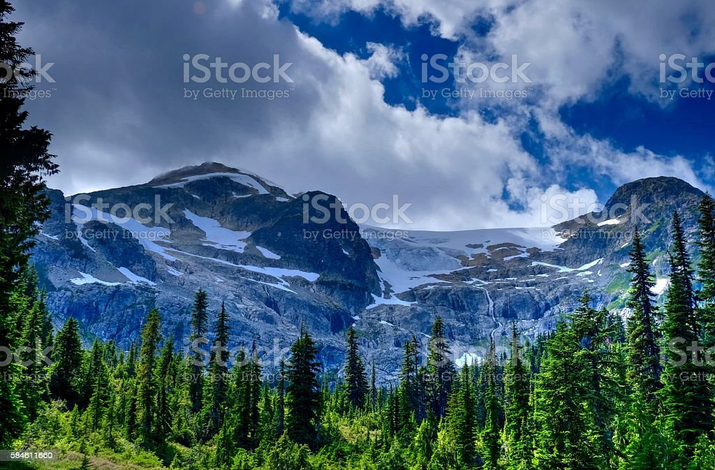Green forest and snow capped mountains after storm. stock photo