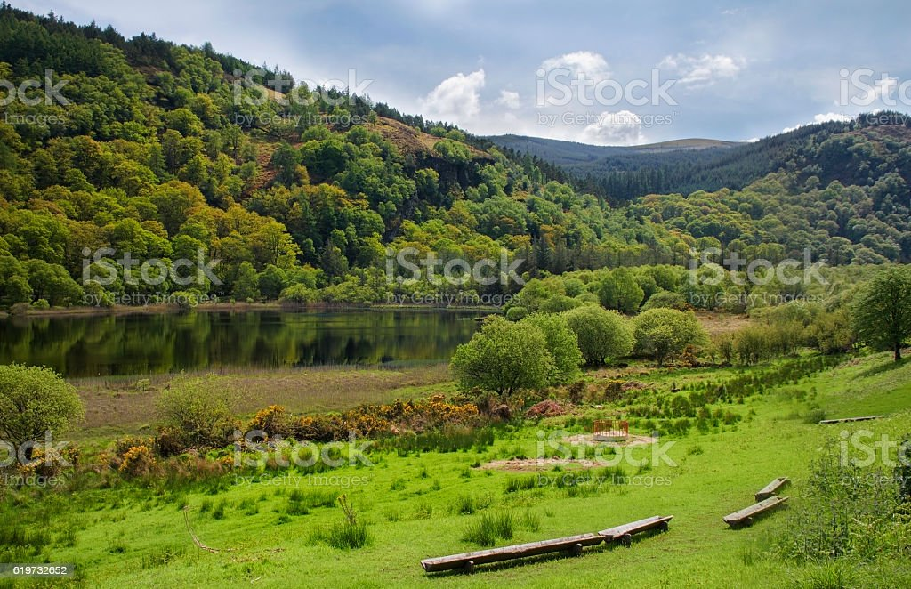 Green forest surrounding a lake, Glendalough, Ireland stock photo