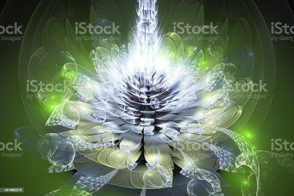 Green fractal flower royalty-free stock photo