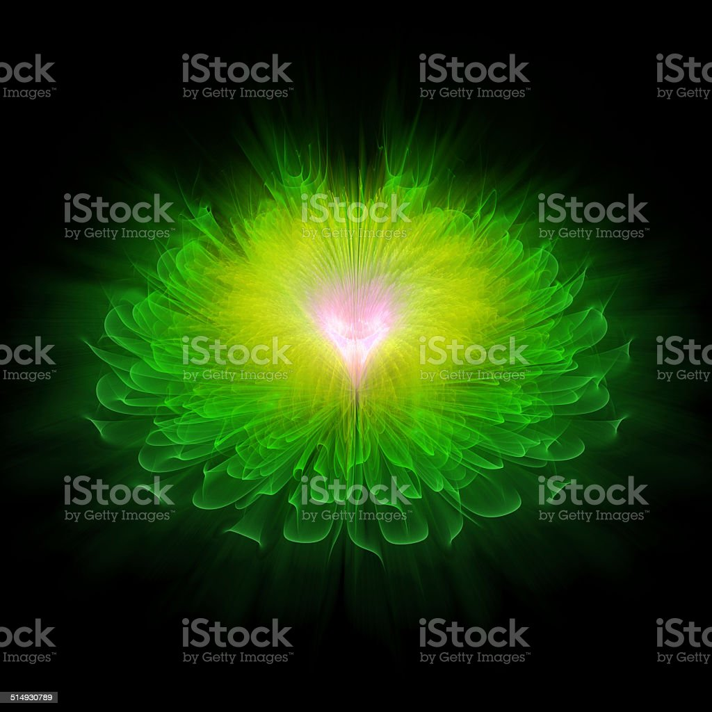 Green fractal flower royalty-free stock photo