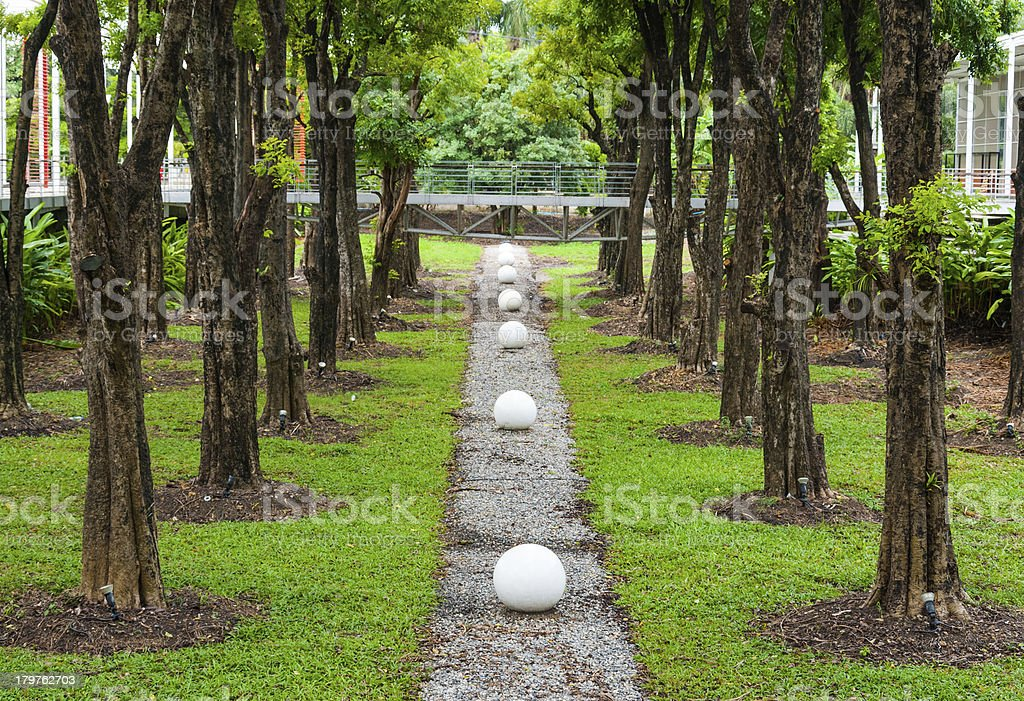 Green garden park along with trees leading line royalty-free stock photo