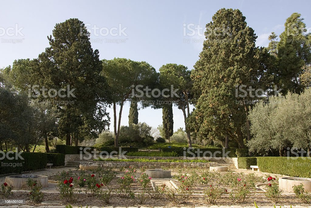 Green garden with trees royalty-free stock photo
