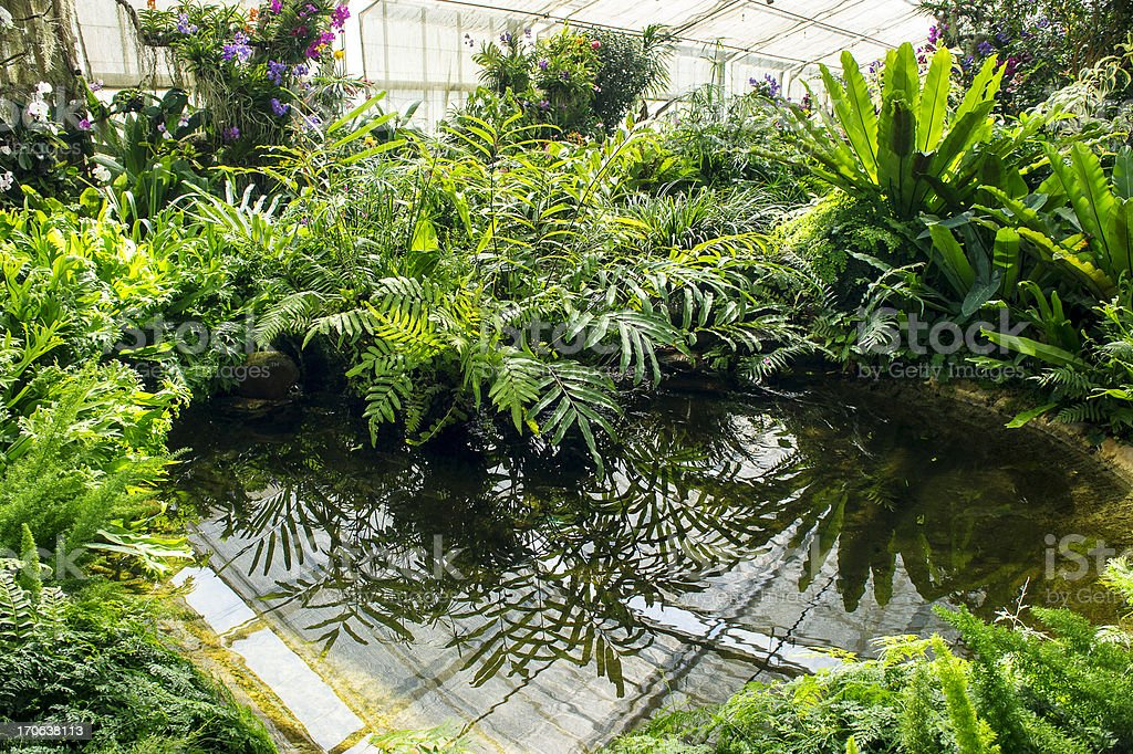 Green Garden With Water Feature royalty-free stock photo