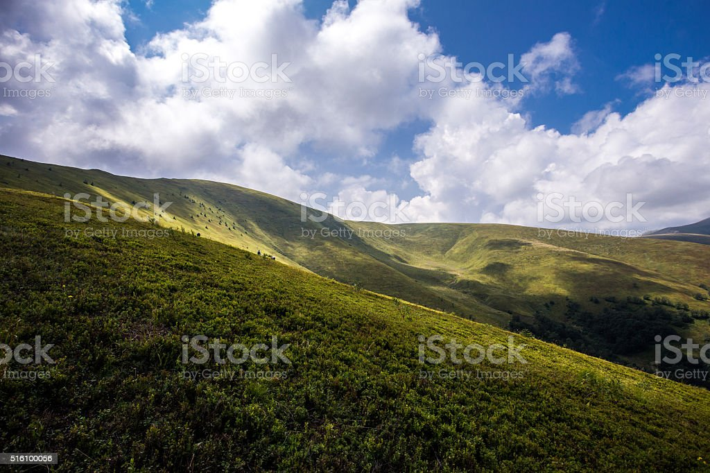 Green glade on mountain background stock photo