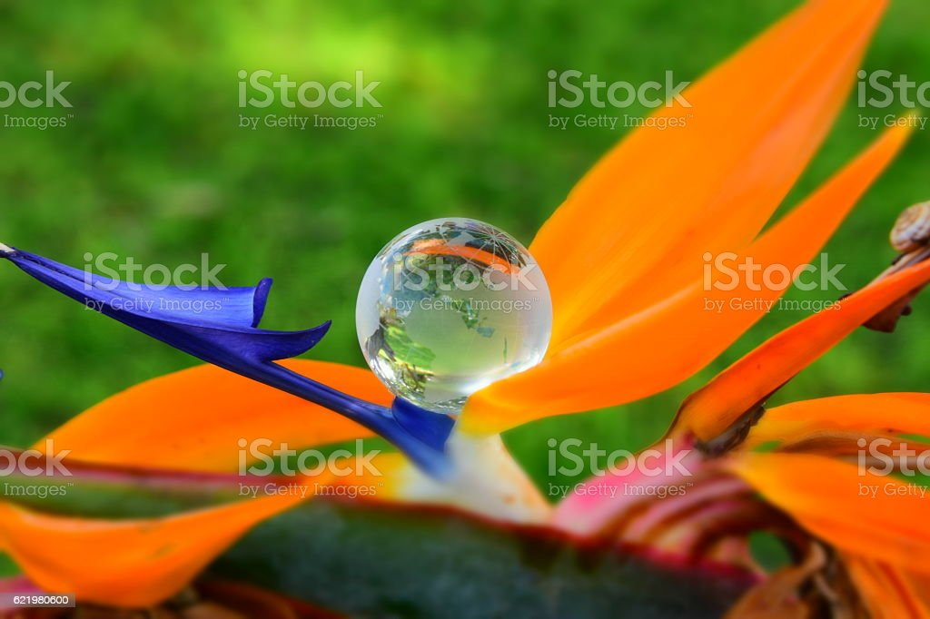 Green Globe Concept stock photo
