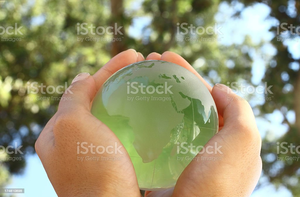 Green globe under the trees stock photo