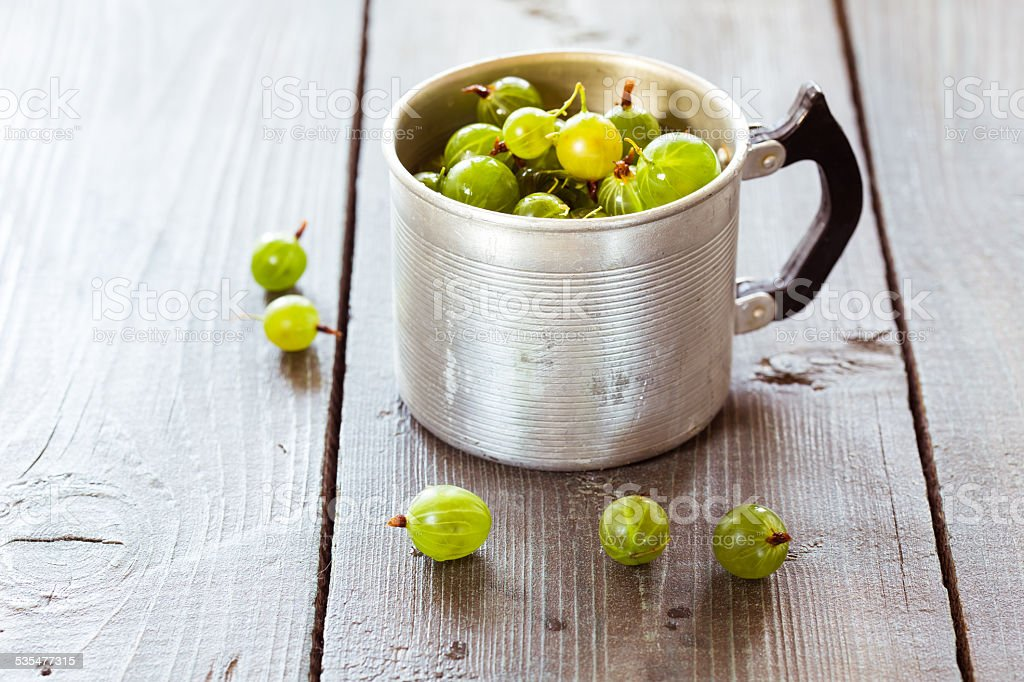 Green gooseberries in a aluminum cup stock photo