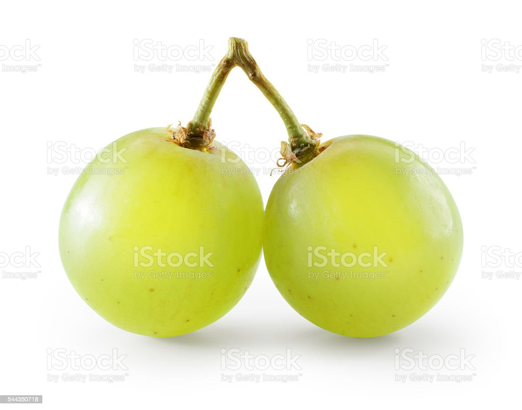 Green grape. Two berries isolated on white. With clipping path. stock photo