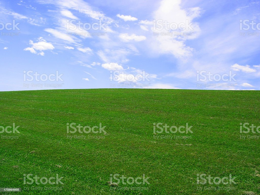 Green grass against a slightly cloudy blue sky royalty-free stock photo