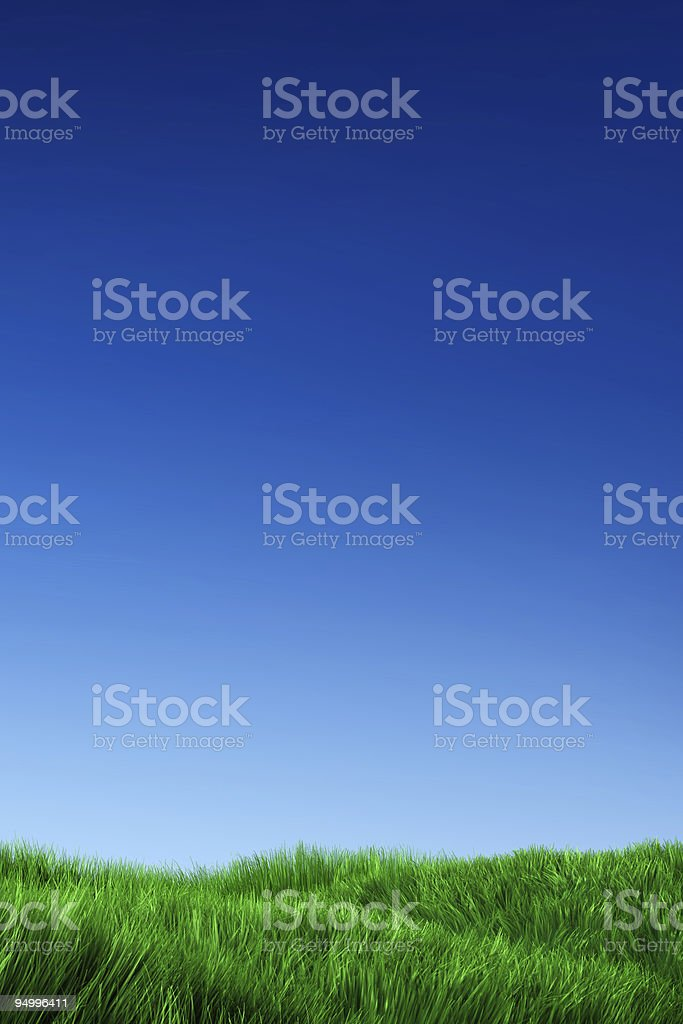 Green Grass & Blue Sky royalty-free stock photo