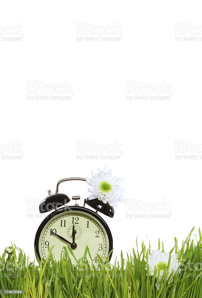 Green grass and alarm clock royalty-free stock photo