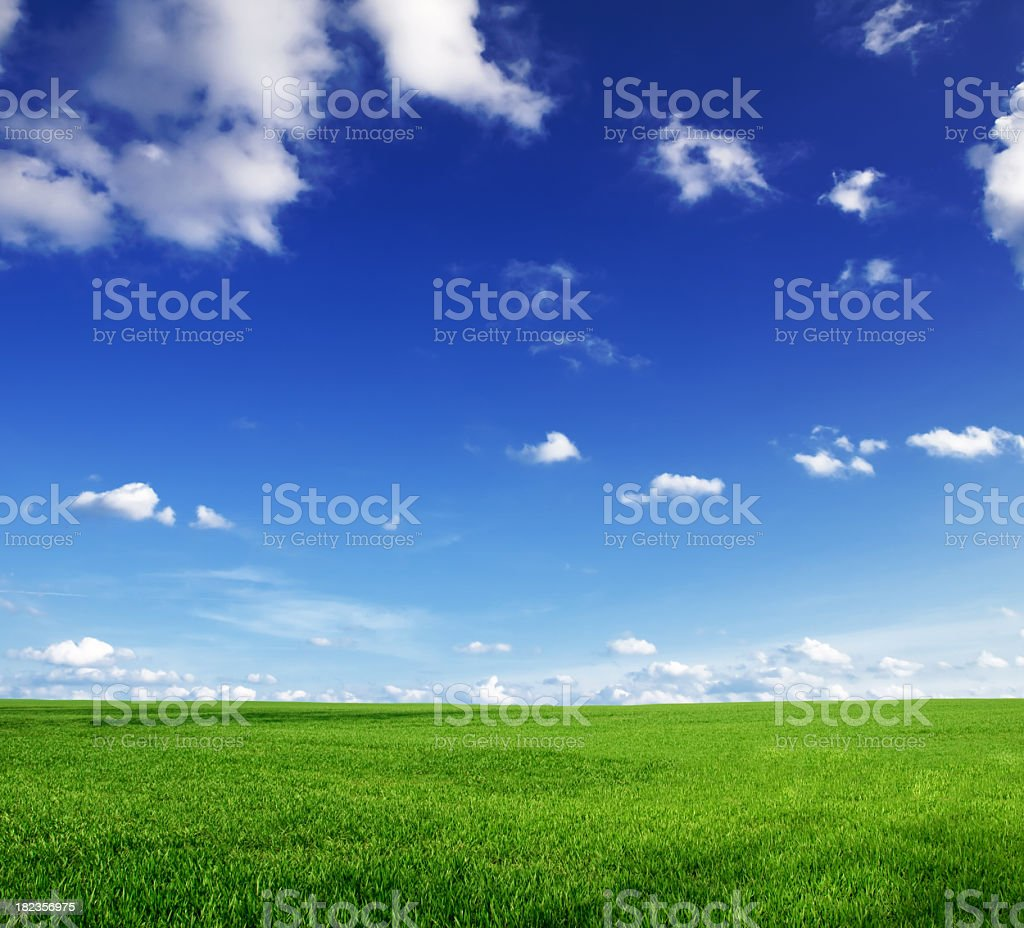 Green grass and blue skies with a few clouds royalty-free stock photo