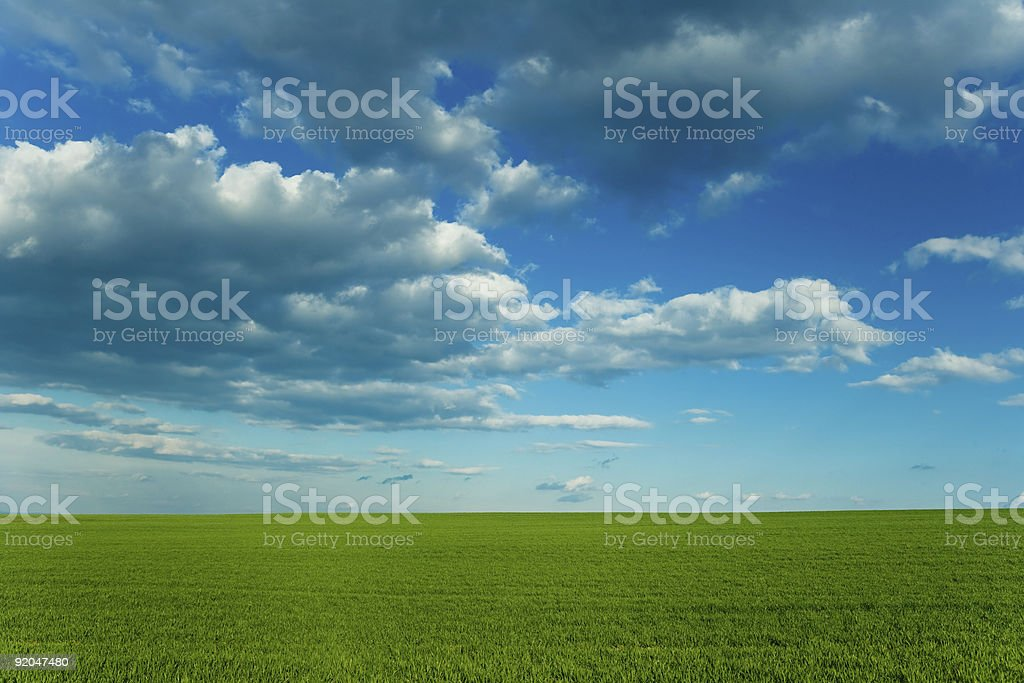 Green grass and blue sky stock photo