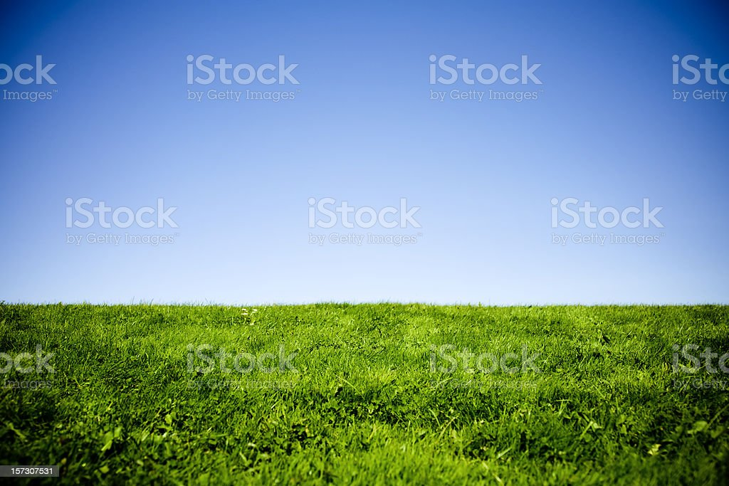 Green Grass and Blue Sky with Vignetting royalty-free stock photo