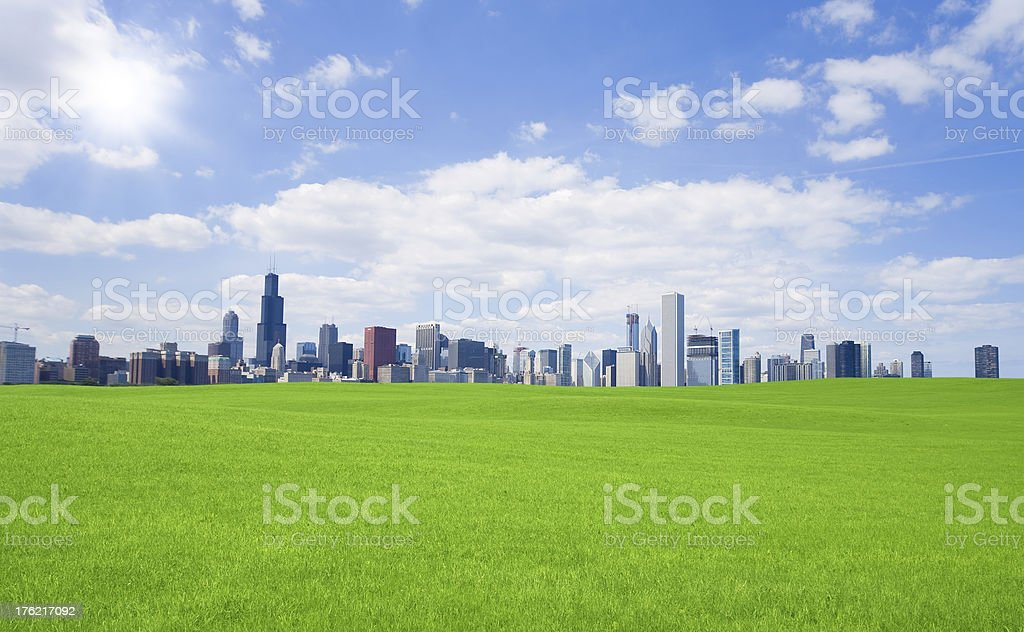 Green grass and  chicago downtown royalty-free stock photo