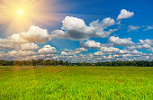 green grass and clouds