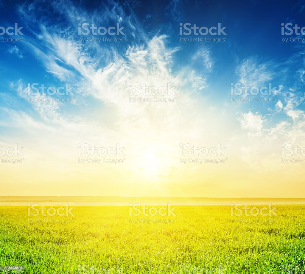 green grass and good sunset in clouds over it stock photo