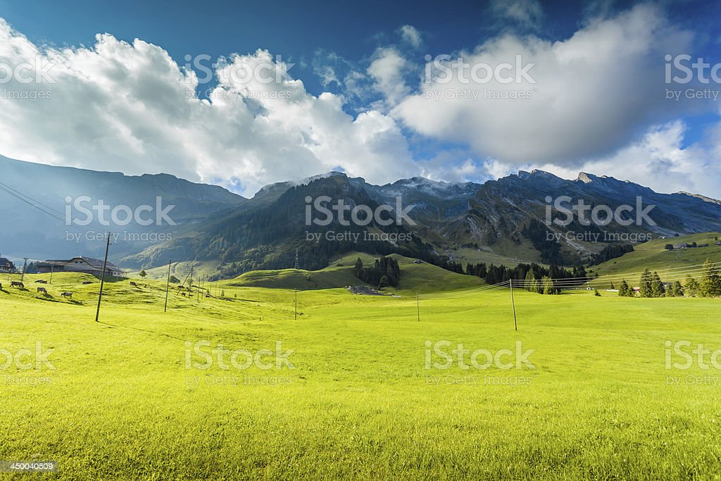 Green Grass and Mountain cloud stock photo