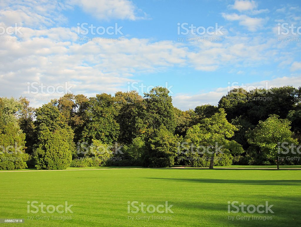 Green grass and trees under blue sky stock photo