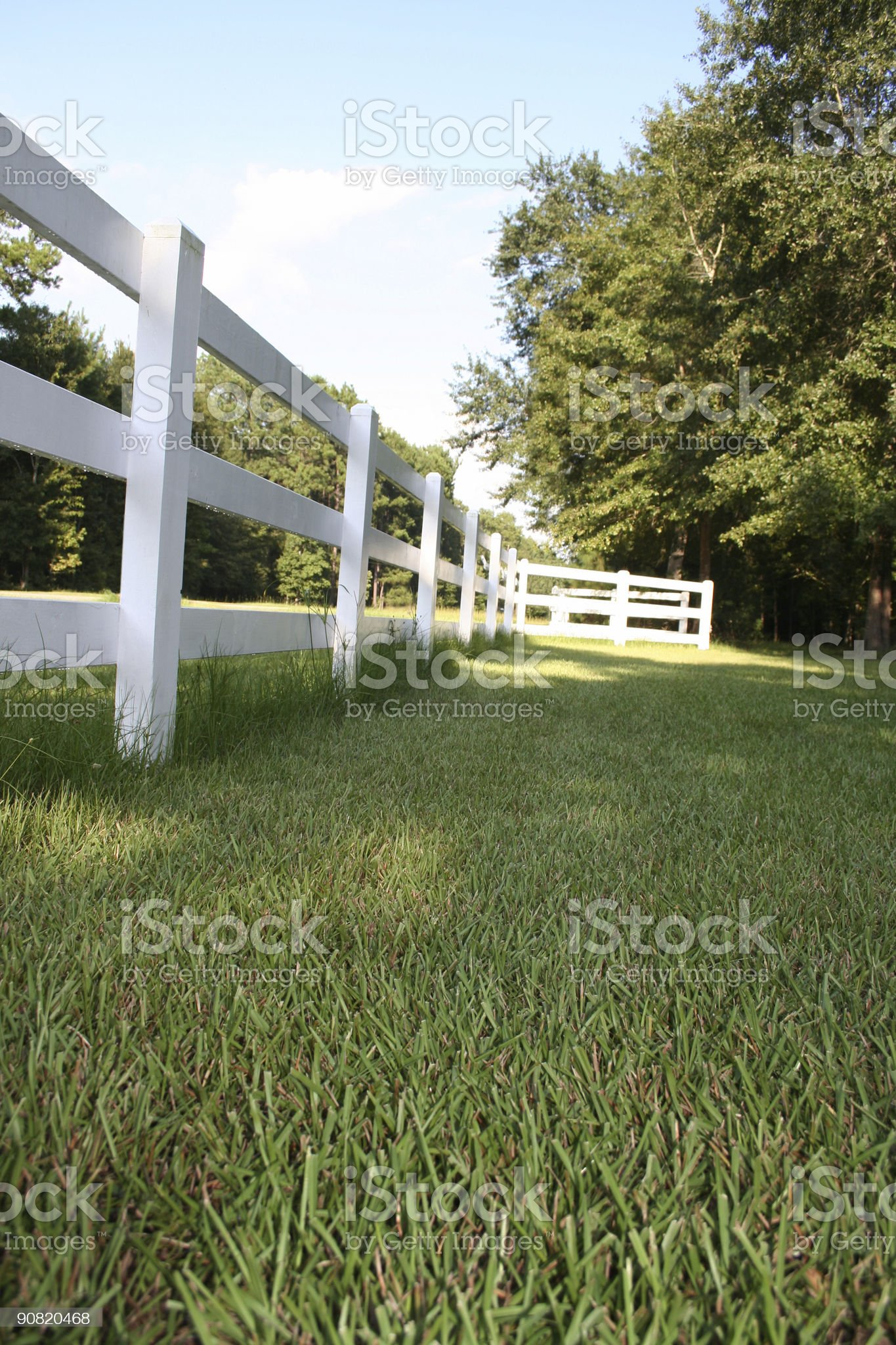 Green grass and white rail fence of a rural dwelling. royalty-free stock photo