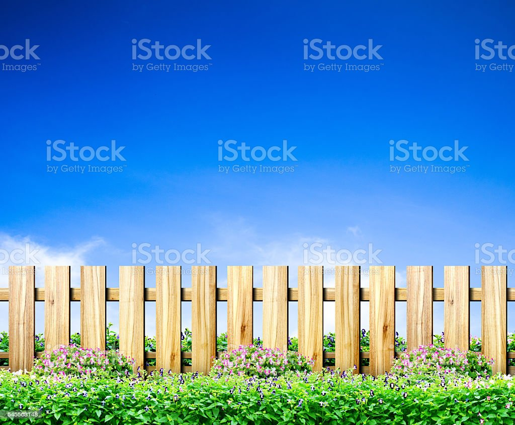 Green grass and wood fence on blue sky background stock photo