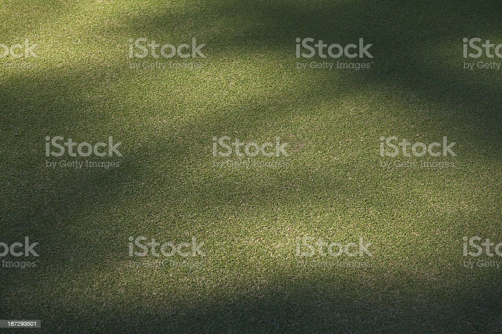 Green grass backgrounds royalty-free stock photo