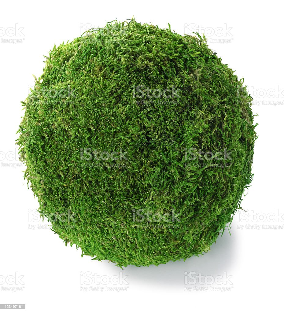 Green Grass Ball royalty-free stock photo