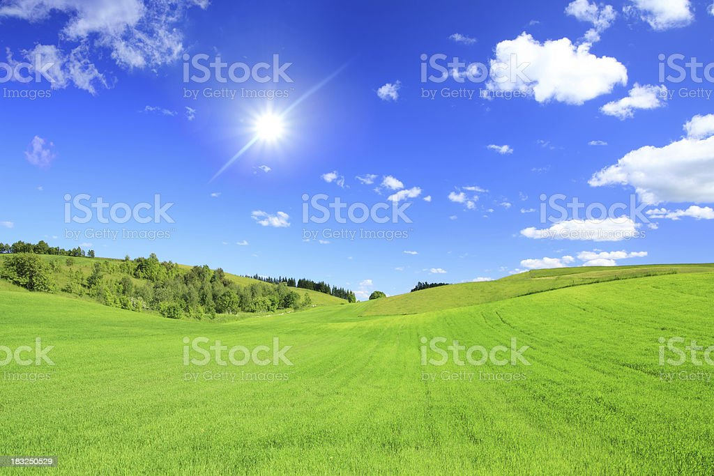 Green grass blue sky and sun royalty-free stock photo