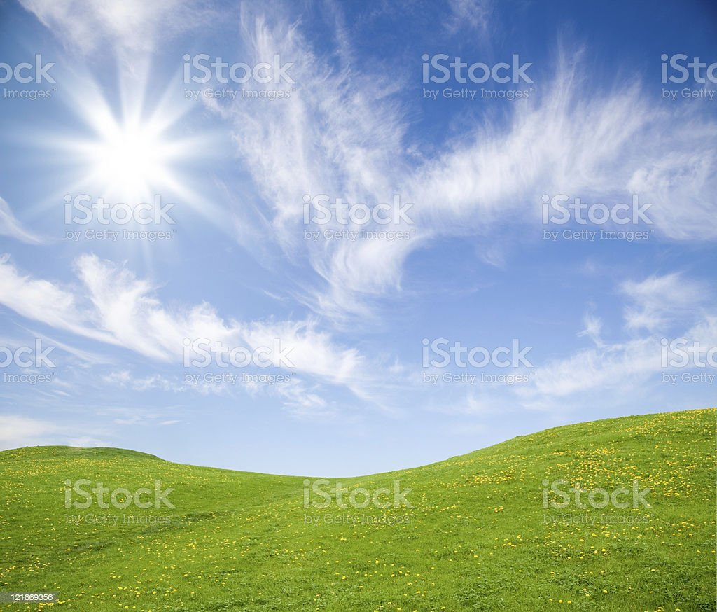 Green grass field against blue sky stock photo